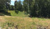 Randonnée Marche Havelange - Bois, Rivière et champs - Photo 14