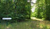 Randonnée Marche SAINT-JEAN-AUX-BOIS - en forêt de Compiègne_2_ruines gallo-romaines de Champlieu_les Petits Monts - Photo 50