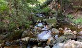 Randonnée Marche Jalhay - Sart - Photo 2