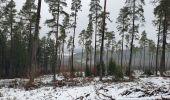 Trail Walk Sainte-Ode - rando lavacherie 29/12/2020 - Photo 12