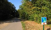 Randonnée Marche LACROIX-SAINT-OUEN - en forêt de Compiègne_35_la Croix Saint-Sauveur_le Ru du Goderu - Photo 31