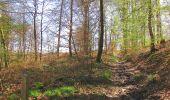 Randonnée A pied VILLERS-COTTERETS - le GR11A  dans la Forêt de Retz  - Photo 56
