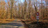 Trail On foot VIEUX-MOULIN - en forêt de Compiègne_23_la Grotte des Ramoneurs_le Mont Berny - Photo 75