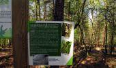 Randonnée Marche LONGPONT - en forêt de Retz_77_Longpont_Puiseux en Retz_AR - Photo 30