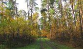 Trail Walk SAINT-JEAN-AUX-BOIS - en forêt de Compiègne_19_le Puits d'Antin_les Mares St-Louis_La Muette - Photo 166