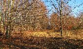 Trail Walk PIERREFONDS - en forêt de Compiègne_24_Tournantes sur le Voliard et sur la Fortelle_chaussée Brunehaut - Photo 6