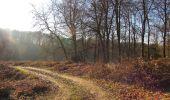 Trail Walk RETHEUIL - en forêt de Retz_76_dans les forêts de Retz et de Compiègne - Photo 34