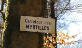 Randonnée A pied VILLERS-COTTERETS - le GR11A  dans la Forêt de Retz  - Photo 62