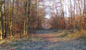 Trail Walk SAINT-JEAN-AUX-BOIS - en forêt de Compiègne_33_12_2019_les Tournantes de l'étang Saint-Jean et des Prés Saint-Jean - Photo 92