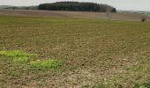 Randonnée Marche Jodoigne - molembais - Photo 1