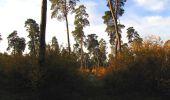 Randonnée Marche SAINT-JEAN-AUX-BOIS - en forêt de Compiègne_19_le Puits d'Antin_les Mares St-Louis_La Muette - Photo 24