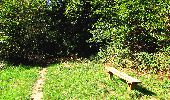 Randonnée A pied VILLERS-COTTERETS - le GR11A  dans la Forêt de Retz  - Photo 45