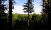 Randonnée Marche SAINT-JEAN-AUX-BOIS - en forêt de Compiègne_6_les Grands Monts_la route tournante sur la tête St-Jean - Photo 187