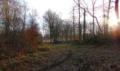 Trail On foot VIEUX-MOULIN - en forêt de Compiègne_23_la Grotte des Ramoneurs_le Mont Berny - Photo 128