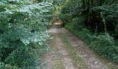 Randonnée Marche NAILLY - Le Fay-Villeperrot-Villenavotte - Photo 19
