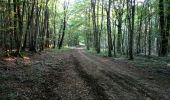 Randonnée Marche NAILLY - Le Fay-Villeperrot-Villenavotte - Photo 18