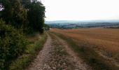 Randonnée Marche NAILLY - Le Fay-Villeperrot-Villenavotte - Photo 16