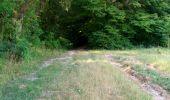 Randonnée Marche NAILLY - Le Fay-Villeperrot-Villenavotte - Photo 10