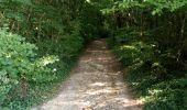 Randonnée Marche NAILLY - Le Fay-Villeperrot-Villenavotte - Photo 8