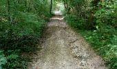 Randonnée Marche NAILLY - Le Fay-Villeperrot-Villenavotte - Photo 7
