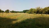 Randonnée Marche NAILLY - Le Fay-Villeperrot-Villenavotte - Photo 5