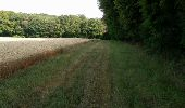 Randonnée Marche NAILLY - Le Fay-Villeperrot-Villenavotte - Photo 4