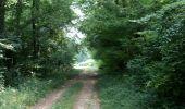 Randonnée Marche NAILLY - Le Fay-Villeperrot-Villenavotte - Photo 1