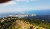 Trail Walk ARGELES-SUR-MER - MasRossinyolMassane110718 - Photo 7