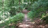 Trail Walk Havelange - FAILON (Château-Ferme de Somal) - Photo 9