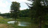 Trail Walk Havelange - FAILON (Château-Ferme de Somal) - Photo 4