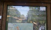 Trail Walk Aywaille - REMOUCHAMPS ... La vallée du Ninglinspo et la charmille. - Photo 7