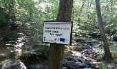 Trail Walk Aywaille - REMOUCHAMPS ... La vallée du Ninglinspo et la charmille. - Photo 5