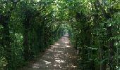 Trail Walk Aywaille - REMOUCHAMPS ... La vallée du Ninglinspo et la charmille. - Photo 1