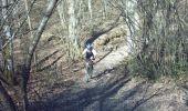 Randonnée V.T.T. MONTAIGUT-SUR-SAVE - Forêt de Bouconne - Photo 3