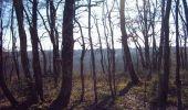 Randonnée V.T.T. MONTAIGUT-SUR-SAVE - Forêt de Bouconne - Photo 2
