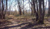 Randonnée V.T.T. MONTAIGUT-SUR-SAVE - Forêt de Bouconne - Photo 1