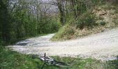 Randonnée V.T.T. DOURGNE - Dourgne, Montagne noire - Photo 4
