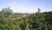 Randonnée V.T.T. LISLE-SUR-TARN - La 4ème Déjanterre d'oc 2006 - Photo 2