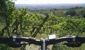 Randonnée V.T.T. LISLE-SUR-TARN - La 4ème Déjanterre d'oc 2006 - Photo 1