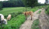 Randonnée V.T.T. VIELLE-ADOUR - Autour de Bagnères-de-bigorre - Photo 2