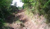 Randonnée V.T.T. BRUNIQUEL - Bruniquel, Grésigne, Penne - Photo 1