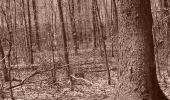Randonnée V.T.T. CROTS - Foret de Boscodon - La Grande Cabanne - Photo 1
