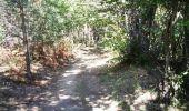 Randonnée V.T.T. LISLE-SUR-TARN - La 3ème Déjanterre d'oc - Photo 1