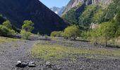 Trail Walk VILLAR-D'ARENE - le refuge de l'alpe de Villard d'arène  - Photo 8
