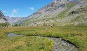 Trail Walk VILLAR-D'ARENE - le refuge de l'alpe de Villard d'arène  - Photo 4