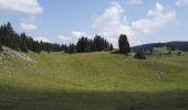 Randonnée Marche Le Chenit - Le Brassus -  Combe des Amburnex 23.07.2018 - Photo 2