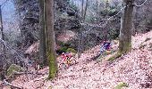 Trail Mountain bike WASSELONNE - Die Wasselonne Strecke - Photo 1