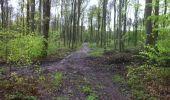 Trail Walk LONGPONT - en forêt de Retz_1_Longpont_rond d'Orleans_AR - Photo 7