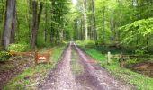 Trail Walk LONGPONT - en forêt de Retz_1_Longpont_rond d'Orleans_AR - Photo 4