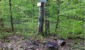 Trail Walk LONGPONT - en forêt de Retz_1_Longpont_rond d'Orleans_AR - Photo 3